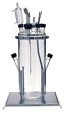 Cultivation vessel 7 liters with culture volume from 1 l for bench-top bioreactor and laboratory fermentor Lambda Minifor