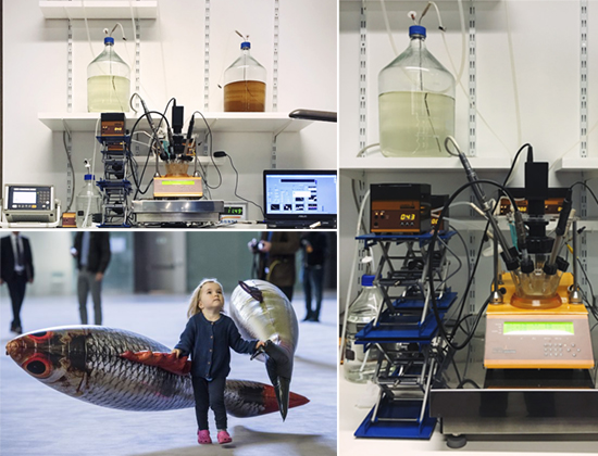 MINIFOR Bioreactor at Philippe Parreno's Anywhen, Tate Modern Hall, London